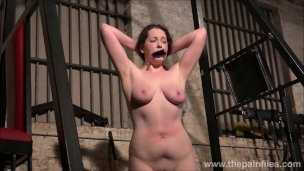 Lifestyle BDSM slave Alora Lux undressed and whipped in the dungeon by dom